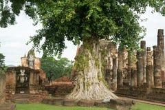 Viaggio di andata e ritorno la Tailandia luglio 2017 - Sukhothai - parco di storia Fotografia Stock