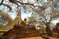 Viaggio di Ayutthaya Fotografie Stock Libere da Diritti