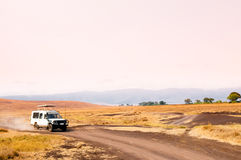 Viaggio di safari in Ngorongoro Immagine Stock Libera da Diritti