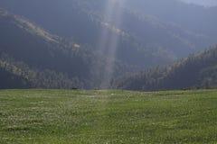 Viaggio di Sandakphu Immagine Stock Libera da Diritti