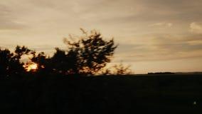 Viaggio lungo la campagna scenica al tramonto Le siluette degli alberi, il tramonto splende archivi video