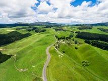 Viaggio stradale sulla collina di rotolamento nel Distretto di Rotorua, Nuova Zelanda Fotografie Stock