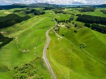 Viaggio stradale sulla collina di rotolamento nel Distretto di Rotorua, Nuova Zelanda Immagine Stock