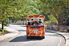 Viaggio turistico dell'automobile allo zoo Tailandia Fotografia Stock Libera da Diritti