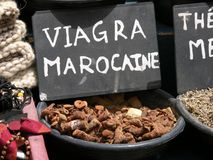 Viagra Marocaine Royalty Free Stock Photography