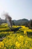 Viajando entre la ciudad de Leshan, las abejas del tren de Yan Yang de ka de Sichuan Qianwei al pequeño canola de la estación de  Imágenes de archivo libres de regalías