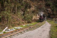 Viajando entre la ciudad de Leshan, las abejas del tren de Yan Yang de ka de Sichuan Qianwei al pequeño canola de la estación de  Imagen de archivo