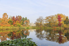 Viajando no jardim botânico famoso, Copenhaga Fotografia de Stock
