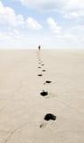 Viajante. Imagens de Stock