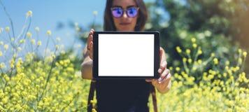 Viajante da menina com óculos de sol usando o dispositivo no alargamento do sol e o fundo amarelo das flores, modelo do espaço da fotografia de stock royalty free