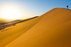 Viajante no deserto, jovem mulher ativa que trekking na região selvagem arenosa quente, por do sol dramático Imagens de Stock Royalty Free