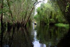 Viajante no turismo do eco no barco de fileira Imagem de Stock