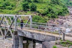 Viajante que anda à ponte de aço branca acima do córrego da floresta Fotografia de Stock