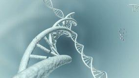 Viaje animado de los filamentos genéticos del código de la DNA representación 3d ilustración del vector