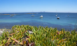Viaje Australia de los barcos del océano fotos de archivo