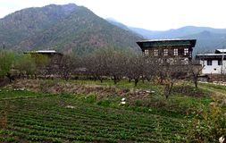 Viaje Bhután Imagen de archivo