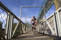 Viaje de la bici de montaña Imagen de archivo