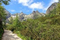 Viaje de la montaña Imagen de archivo libre de regalías