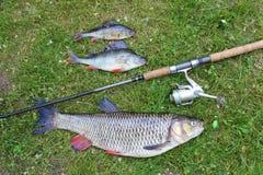Viaje de pesca muy bueno, cacho grande y perca imagenes de archivo