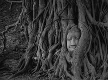 Viaje de Tailandia Fotos de archivo