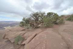 Viaje de Utah Fotografía de archivo