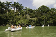 Viaje del barco de río de Belice que busca fauna Fotos de archivo libres de regalías