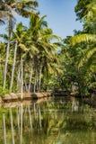 Viaje del barco a través de los canales del remanso de la isla de Munroe en Kollam en la India imagenes de archivo