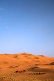 Viaje del camello Imagen de archivo