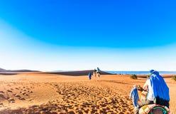 Viaje del camello en el desierto de Marruecos al lado del ` Hamid de M Fotos de archivo