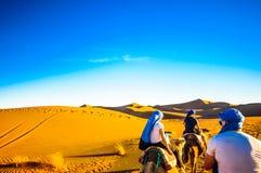 Viaje del camello en el desierto de Marruecos al lado del ` Hamid de M Imágenes de archivo libres de regalías