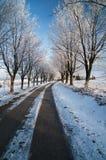 Viaje del invierno Fotografía de archivo libre de regalías