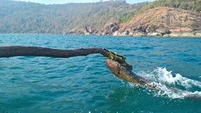 Viaje del océano Imagen de archivo libre de regalías
