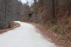 Viaje del otoño en la montaña Foto de archivo libre de regalías