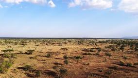 Viaje del safari a trav?s de la sabana africana Tiro a?reo del pueblo rural africano tradicional de la tribu Estaci?n seca en del almacen de metraje de vídeo