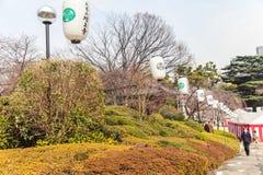 Viaje del templo de Zojoji en Japón el 30 de marzo de 2017 Imagenes de archivo