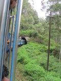 Viaje del tren al país de la colina de Sri Lanka fotos de archivo