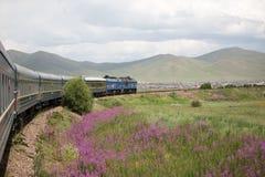 Viaje exótico del tren mongol del transporte, Mongolia Fotografía de archivo libre de regalías