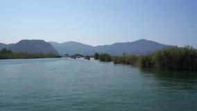 Viaje extenso turco del río a lo largo de la opinión verde de la costa de Dalyan almacen de video