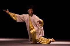 Viaje italiano de los héroes 2010 de Kung Fu Imágenes de archivo libres de regalías