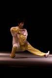 Viaje italiano de los héroes 2010 de Kung Fu Imagen de archivo