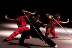 Viaje italiano de los héroes 2010 de Kung Fu Fotografía de archivo
