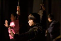 Viaje italiano de los héroes 2010 de Kung Fu Imagen de archivo libre de regalías