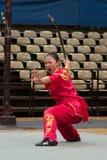 Viaje italiano de los héroes 2010 de Kung Fu Foto de archivo libre de regalías