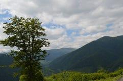 Viaje a las montañas fotografía de archivo