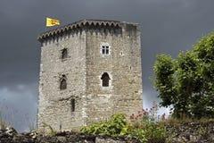 Viaje Moncade, ciudad Orthez, Francia del La de la torre del castillo fotografía de archivo libre de regalías