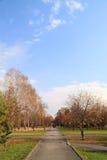 Viaje que recorre en el parque del otoño. Foto de archivo libre de regalías