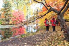 Viaje Sapporo en otoño imagen de archivo