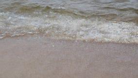 Viaje y concepto del mar Ondas frías del mar Báltico y de la orilla arenosa en otoño almacen de metraje de vídeo