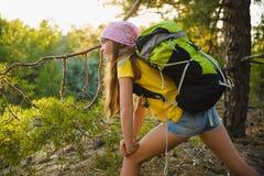 Viajero de la muchacha con la mochila en la aventura del bosque de la colina, viaje, concepto del turismo Fotografía de archivo libre de regalías