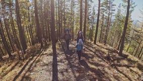 viajes de la familia Ambiente de la gente por las montañas, ríos, corrientes Los padres y los niños caminan usando emigrar polos  metrajes